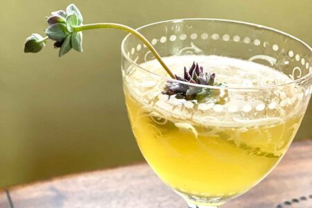 beg borrow and steal cocktail with ornamental sage in a coupe glass