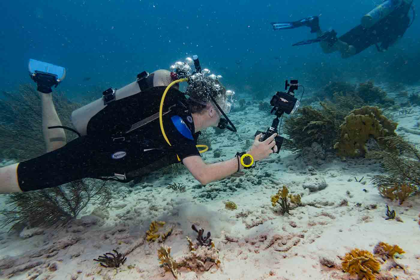 scuba diving with a camera in Bonaire Island
