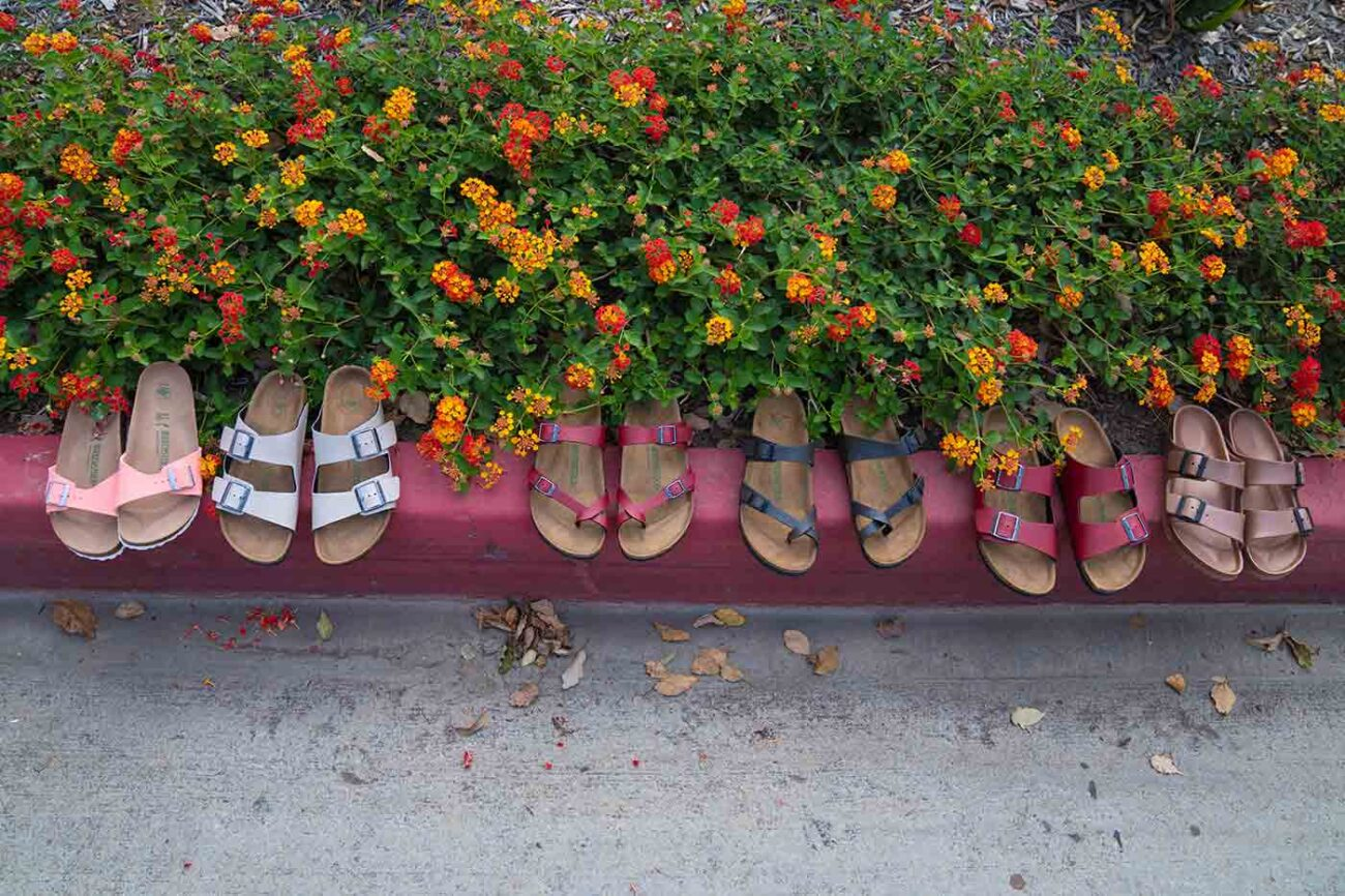 row of vegan Birkenstocks